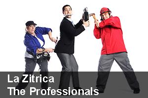 The_professionals_portada